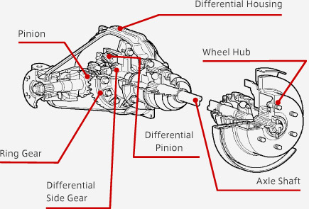 Differential | Driveline | ILLUSTRATED SERVICE & PARTS GUIDE
