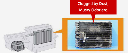 Evaporator Cleaner Miscellaneous Illustrated Service
